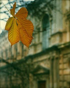 HweeYen Ong - Autumn at Alhambra