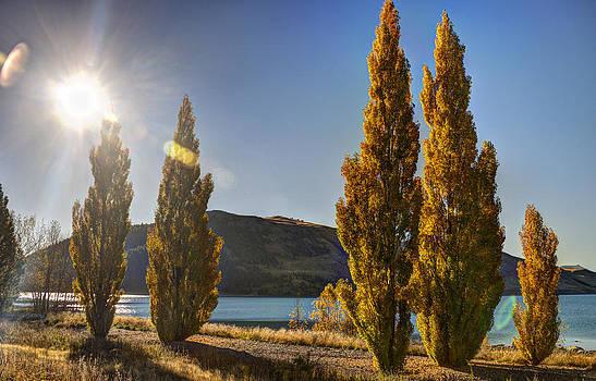 Autumn at Lake Tekapo by Andreas Hartmann