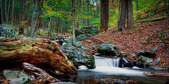 Dave Hahn - Autumn at the River