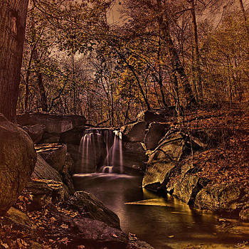 Autumn At The Waterfall In the Ravine in Central Park by Chris Lord