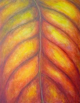 Autumn Color by Pauline Kane