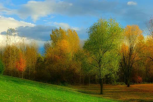 Autumn colors by Suzanne Blais