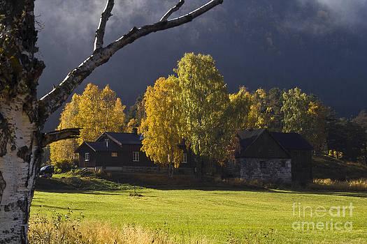 Heiko Koehrer-Wagner - Autumn Feeling