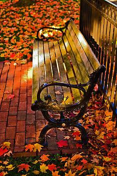 Ludmila Nayvelt - Autumn fever