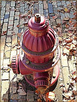 Autumn Fire Hydrant by ShatteredGlass Photography