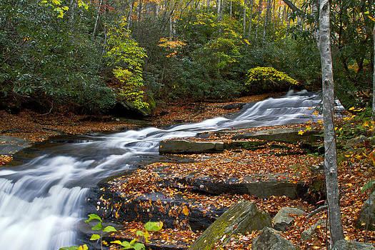 Autumn Flow by Christine Annas