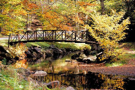 Darlene Bell - Autumn Footbridge
