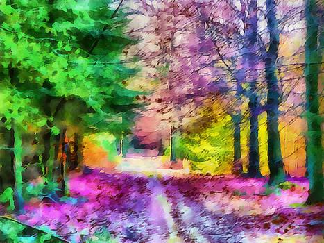 Autumn forest by Jolande Gerritsen
