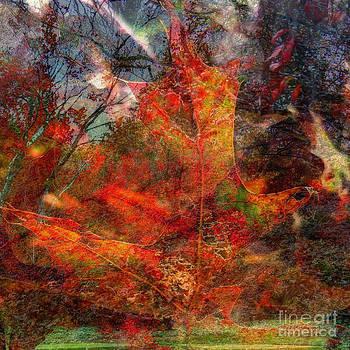Autumn Fusion 2 by Jeff Breiman
