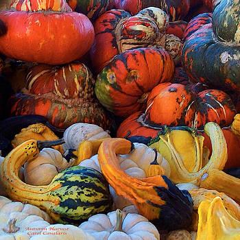Carol Cavalaris - Autumn Harvest