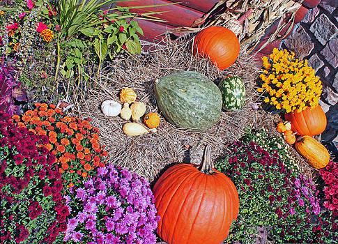 Autumn Harvest by Janet Pugh