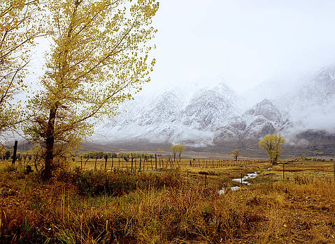 Autumn in Lone Pine by John Wolf