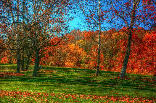 Ronald T Williams - Autumn In The Park
