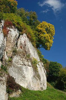 Waldek Dabrowski - Autumn landscape