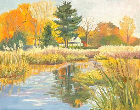 Autumn Marsh View by Karen Lipeika
