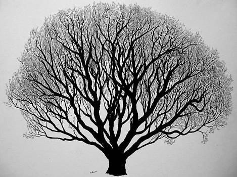 Autumn by Marwan Hasna - Art Beat