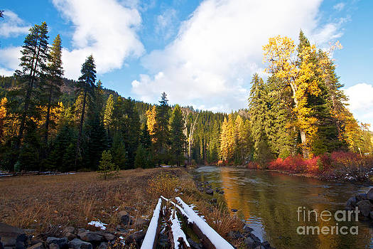 Autumn Mood by Marcus Angeline