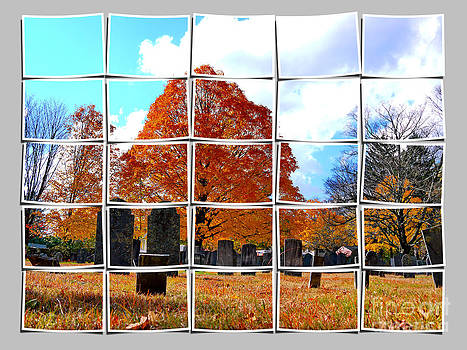 Autumn by Nancie DeMellia