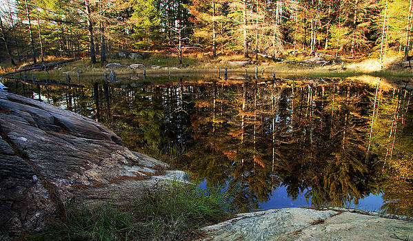 Autumn on Go Home Lake by Carol Hathaway