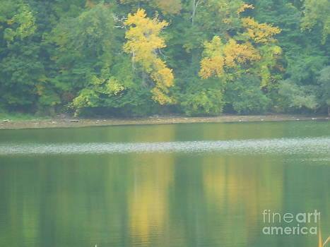 Autumn on the Bay by Barbara McNeil