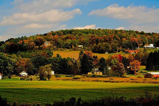 Darlene Bell - Autumn On The Hillside