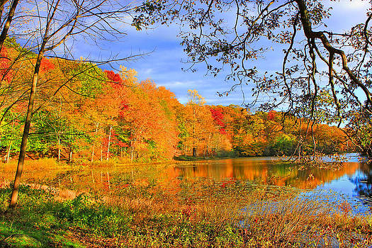 Autumn on the Lake by Cathy Leite Photography