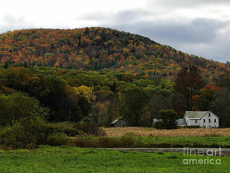 Autumn on the Mohawk Trail by Corrie McDermott