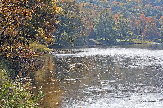 Darlene Bell - Autumn On The River