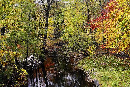 Scott Hovind - Autumn Over Kearsley Creek