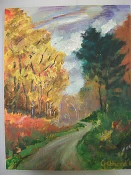 Autumn path  by Chloe  Mitchard