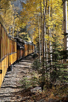 Autumn Rail by Jim Norwood