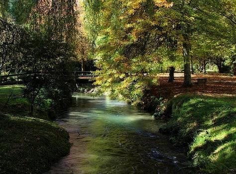 Autumn Reflections by Judy Watson