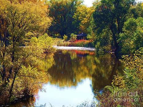 Autumn Reflections On a Crystal Pond by Donna Parlow