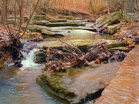 Autumn River by Felix Concepcion