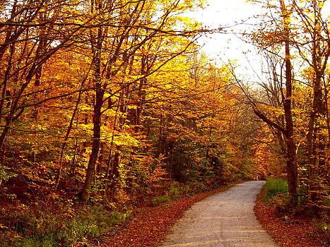 Frank SantAgata - Autumn Road