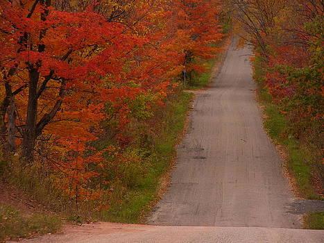 Autumn Road by Karolina Olszewska