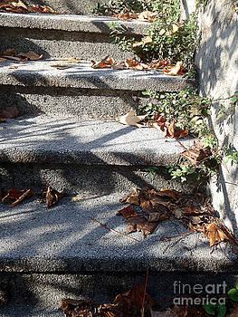 Autumn stairs 2 by Marisa Gabetta