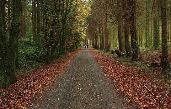 Autumn Stroll. by Peter Skelton