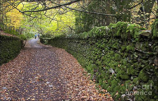 Autumn Walk by George Hodlin