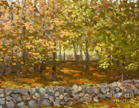 Autumn Woods  by Jane  Simonson