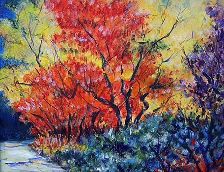 Autumnal Colors by Jon Shepodd
