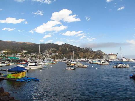 Avalon Bay Catalina Island by Tony and Kristi Middleton