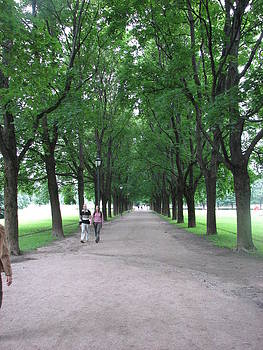 Gal Moran - Avenue of lovers