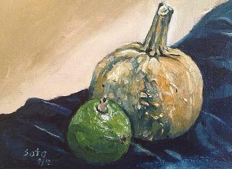 Avocado and Pumpkin by Victor SOTO