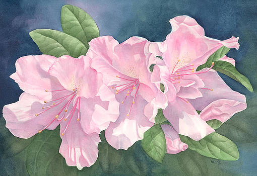 Azaleas by Leona Jones