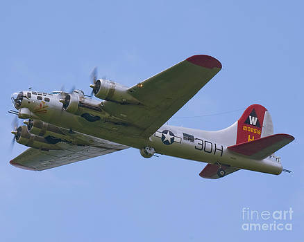 Tim Mulina - B-17G Aluminum Overcast
