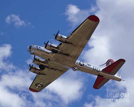 Tim Mulina - B-17G Yankee Lady overhead