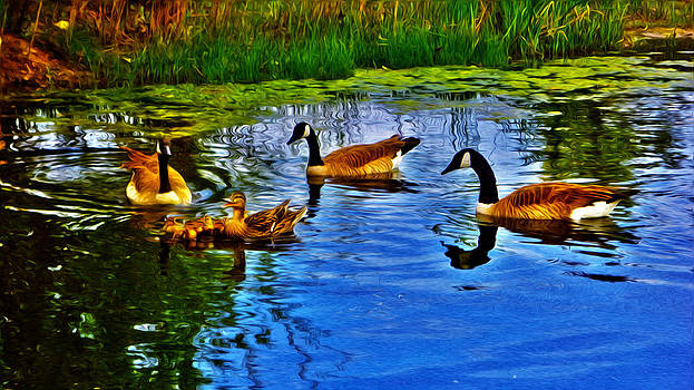 Baby Ducks by Sergio Aguayo