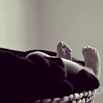 Baby Feet! #babies #newborns by PBYC Prints