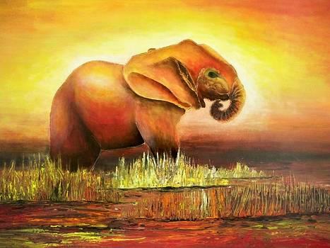Baby Red Elephant by Maximo Pizarro